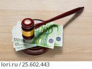 Купить «Judge's gavel and one hundred euro banknotes», фото № 25602443, снято 8 июня 2016 г. (c) Ярочкин Сергей / Фотобанк Лори