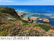 Купить «Summer blossoming Atlantic coastline (Galicia).», фото № 25605219, снято 11 мая 2016 г. (c) Юрий Брыкайло / Фотобанк Лори