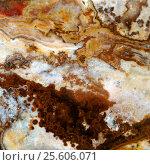 Купить «Macro texture of nature - onyx», фото № 25606071, снято 22 июля 2019 г. (c) ElenArt / Фотобанк Лори