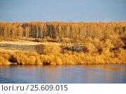 Весенний пейзаж - лес на берегу реки, вид с высоты на закате, фото № 25609015, снято 15 апреля 2016 г. (c) Зезелина Марина / Фотобанк Лори