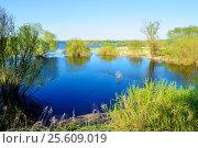 Купить «Spring background - spring landscape with trees at the bank of the blue river», фото № 25609019, снято 5 мая 2016 г. (c) Зезелина Марина / Фотобанк Лори