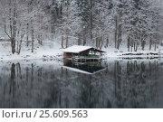 Причал на озере Альзее зимой. Бавария. Германия. (2014 год). Стоковое фото, фотограф Daria Trefilova / Фотобанк Лори