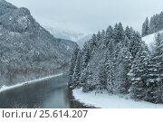 Река Лех зимой. Фюссен. Германия (2014 год). Стоковое фото, фотограф Daria Trefilova / Фотобанк Лори