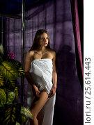 Купить «Gorgeous longhaired blonde wrapped in white towel», фото № 25614443, снято 13 декабря 2016 г. (c) Гурьянов Андрей / Фотобанк Лори