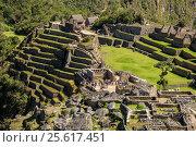 Купить «Вид на террасы Мачу-Пикчу. Перу.», фото № 25617451, снято 13 октября 2016 г. (c) AK Imaging / Фотобанк Лори