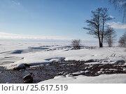 Незамерзающий ручей впадает в Финский залив. Зимний пейзаж, фото № 25617519, снято 25 февраля 2017 г. (c) Юлия Бабкина / Фотобанк Лори