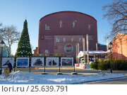 """Купить «Сад """"Эрмитаж"""" в Москве», эксклюзивное фото № 25639791, снято 20 декабря 2016 г. (c) Елена Коромыслова / Фотобанк Лори"""