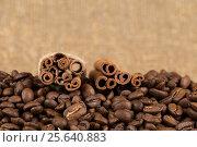 Grains of coffee aroma and invigorating drink. Стоковое фото, фотограф Глыцко Андрей / Фотобанк Лори