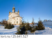 Купить «Church of Archangel Michael in winter Yuryev-Polsky», фото № 25641527, снято 7 января 2017 г. (c) Анна Костенко / Фотобанк Лори