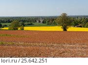 Купить «Весенние поля», фото № 25642251, снято 14 мая 2016 г. (c) Татьяна Кахилл / Фотобанк Лори
