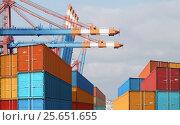 Export import cargo containers in harbor. Стоковое фото, фотограф Андрей Кузьмин / Фотобанк Лори