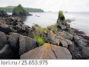 Купить «Берег острова Уруп из гряды Курильских островов», фото № 25653975, снято 26 марта 2019 г. (c) Денис Черкашин / Фотобанк Лори