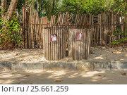 Купить «Оригинальные контейнеры для раздельного сбора бытового мусора. Королевство Таиланд, провинция Краби», фото № 25661259, снято 31 января 2017 г. (c) Владимир Сергеев / Фотобанк Лори