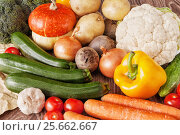 Fresh vegetables: pumpkin, beetroot, cucumbers, tomatoes, broccoli, peppers, onions, garlic, zucchini, carrots,potatoes, cauliflower on the wooden table. Rustic style. Стоковое фото, фотограф Анастасия Богатова / Фотобанк Лори
