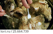 Купить «Cooking on the open fire. Pieces of freshwater fish fried in a cast-iron skillet. HD», видеоролик № 25664739, снято 27 февраля 2017 г. (c) ActionStore / Фотобанк Лори