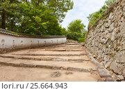 Купить «Сохранившаяся часть стены Саннохираягура Хигаси (17 в.) в замке Биттю Мацуяма, Такахаси, Япония», фото № 25664943, снято 20 июля 2016 г. (c) Иван Марчук / Фотобанк Лори