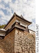 Купить «Башня Го-но-хираягура основного двора замка Биттю Мацуяма, город Такахаси, Япония», фото № 25664947, снято 20 июля 2016 г. (c) Иван Марчук / Фотобанк Лори