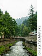 Купить «Georgia resort - Sairme», фото № 25668875, снято 10 июля 2016 г. (c) Давидич Максим / Фотобанк Лори