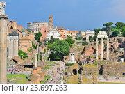 Купить «Римский Форум перед грозой», фото № 25697263, снято 1 июня 2015 г. (c) Татьяна Савватеева / Фотобанк Лори