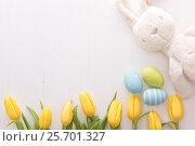 Tulips, easter eggs and bunny. Стоковое фото, фотограф Юлия Младич / Фотобанк Лори