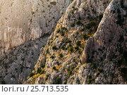 Large picture rocks in the rays of the setting sun. Стоковое фото, фотограф Андрей Орехов / Фотобанк Лори