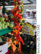 Red and green pepper hanging on the market in Omis, Croatia. Стоковое фото, фотограф Андрей Орехов / Фотобанк Лори