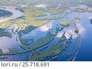 Затопленная пойма реки Вах, притока реки Обь в ее среднем течении, вид сверху, фото № 25718691, снято 19 июня 2015 г. (c) Владимир Мельников / Фотобанк Лори