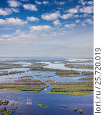 Aerial view flooded forest plains with power lines, фото № 25720019, снято 21 июня 2015 г. (c) Владимир Мельников / Фотобанк Лори