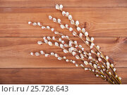 Branches of pussy willow on a wooden background. Стоковое фото, фотограф Владимир Семенчук / Фотобанк Лори