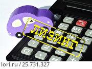Купить «Лизинг - форма кредитования при приобретении дорогостоящих товаров», фото № 25731327, снято 12 февраля 2016 г. (c) Сергеев Валерий / Фотобанк Лори