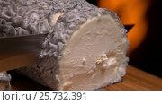 Купить «Goat cheese on the background of a burning fireplace», видеоролик № 25732391, снято 5 февраля 2017 г. (c) Дебалюк Александр Владимирович / Фотобанк Лори