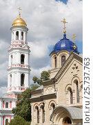 Chitcani, Moldova, bell tower and church of the monastery Neu-Niamtz (2016 год). Редакционное фото, агентство Caro Photoagency / Фотобанк Лори