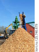 Woodchips strewed from transporter. Стоковое фото, фотограф Андрей Силивончик / Фотобанк Лори