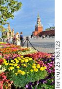 Купить «Группа туристов стоит на краю Красной площади в Москве», фото № 25763123, снято 8 июля 2015 г. (c) Елена Перминова / Фотобанк Лори