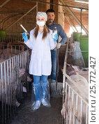 Купить «Farmer and veterinarian in pig sty», фото № 25772427, снято 16 октября 2018 г. (c) Яков Филимонов / Фотобанк Лори