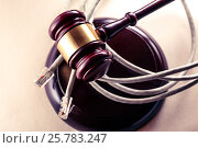 Computer cable and wooden gavel. Стоковое фото, фотограф Ярочкин Сергей / Фотобанк Лори
