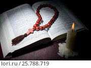 Купить «Holy book and cross on a wooden background», фото № 25788719, снято 29 сентября 2015 г. (c) Владимир Ковальчук / Фотобанк Лори