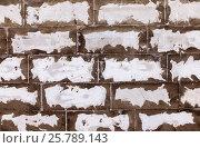 Купить «Стена из пеноблоков в качестве фона», фото № 25789143, снято 23 октября 2018 г. (c) FotograFF / Фотобанк Лори