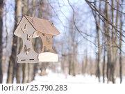 Купить «Резная кормушка для птиц висит на дереве в зимнем парке», фото № 25790283, снято 6 марта 2017 г. (c) Лариса Капусткина / Фотобанк Лори