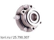 Купить «Hub and wheel bearing kit», фото № 25790307, снято 1 июня 2015 г. (c) Владимир Ковальчук / Фотобанк Лори