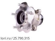 Купить «Hub and wheel bearing kit», фото № 25790315, снято 1 июня 2015 г. (c) Владимир Ковальчук / Фотобанк Лори
