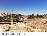 Вид на мечеть Аль-Акса и гору Елеонскую (Масличную), Иерусалим, старый город, Израиль, фото № 25794411, снято 5 декабря 2015 г. (c) Наталья Волкова / Фотобанк Лори