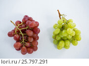 Купить «Close-up of green and red bunches of grapes», фото № 25797291, снято 19 декабря 2016 г. (c) Wavebreak Media / Фотобанк Лори