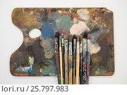 Купить «Watercolor paints and paint brushes on palette», фото № 25797983, снято 13 октября 2016 г. (c) Wavebreak Media / Фотобанк Лори