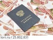 Купить «Трудовая книжка и российский деньги», фото № 25802831, снято 5 января 2017 г. (c) Наталья Осипова / Фотобанк Лори