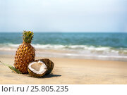 Coconuts and pineapples on the sand by the sea. Стоковое фото, фотограф Dmitriy Melnikov / Фотобанк Лори