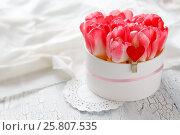 Букет розовых тюльпанов в коробке на белом фактурном фоне. Стоковое фото, фотограф Kroshanya / Фотобанк Лори