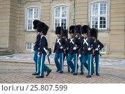 Купить «Марширующие королевские гвардейцы. Развод караула у дворца Амалиенборг. Копенгаген, Дания», фото № 25807599, снято 3 ноября 2014 г. (c) Виктор Карасев / Фотобанк Лори