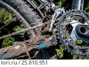 Купить «Грязный велосипед в велосипедном походе по Дону в мае 2016», фото № 25810951, снято 2 мая 2016 г. (c) Матвей Солодовников / Фотобанк Лори