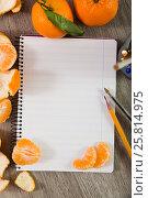 Купить «Notebook with writing utensils», фото № 25814975, снято 20 сентября 2018 г. (c) Яков Филимонов / Фотобанк Лори
